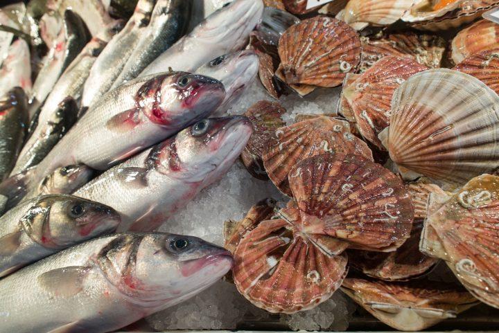 esempi della varietà di pesce
