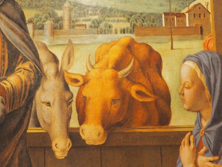 dettaglio, Lazzaro Bastiani, Natività tra Santi, Gallerie dell'Accademia
